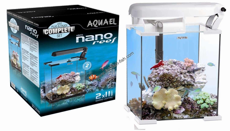 Ebay for Acquario bianco usato