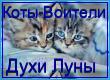 http://img843.imageshack.us/img843/3920/36cc.png