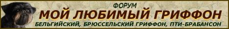 Форум породы ГРИФФОН